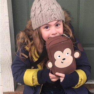 myabetic-monkey